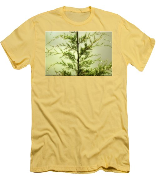 Men's T-Shirt (Slim Fit) featuring the photograph Pine Shower by Brian Wallace