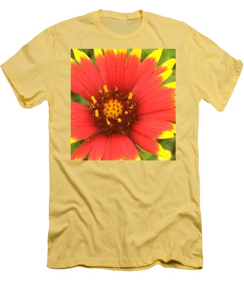 Pollinated Men's T-Shirt (Athletic Fit)