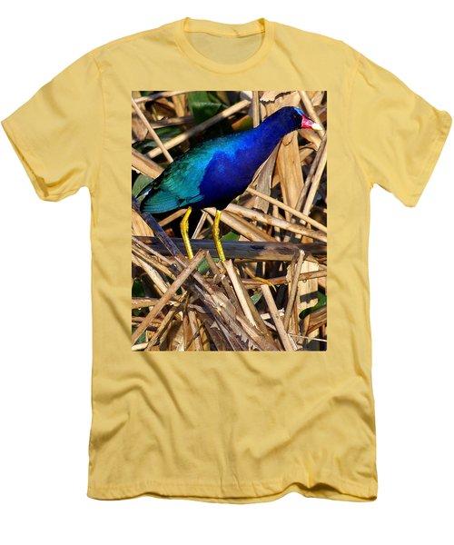 Purple Galinule 002 Men's T-Shirt (Slim Fit) by Chris Mercer