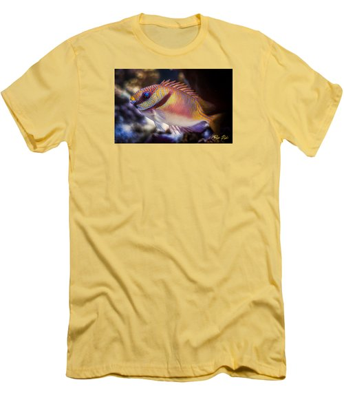 Rabbitfish Men's T-Shirt (Slim Fit) by Rikk Flohr