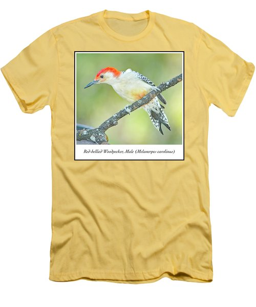 Red Bellied Woodpecker, Male Men's T-Shirt (Slim Fit) by A Gurmankin