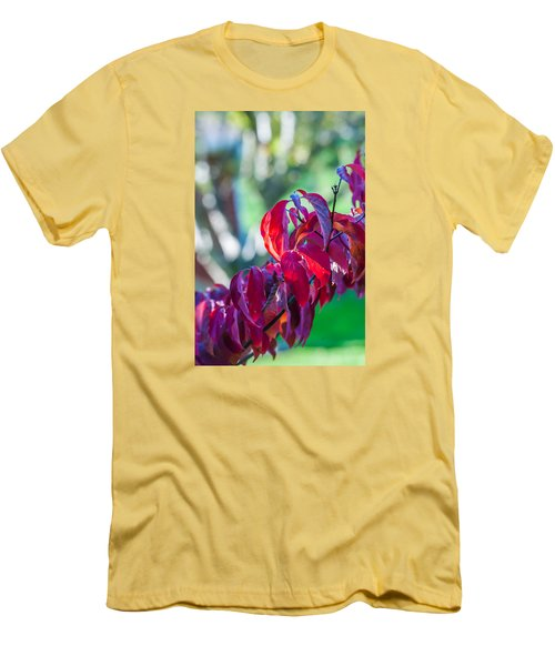 Red Leaves - 9592 Men's T-Shirt (Slim Fit) by G L Sarti