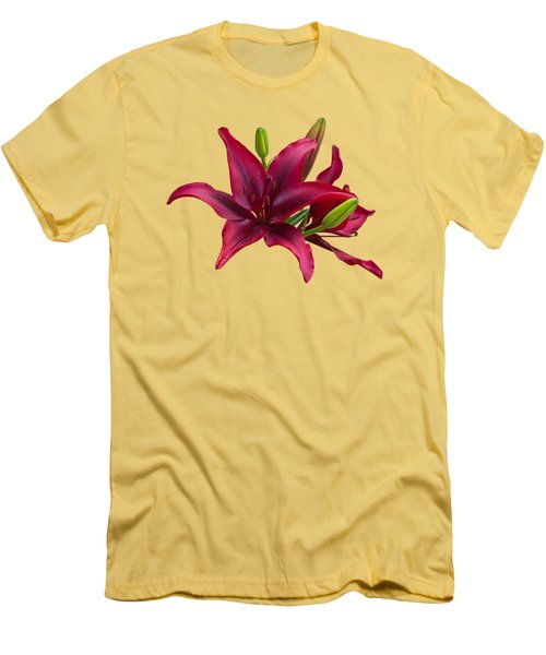 Red Lilies Men's T-Shirt (Slim Fit) by Jane McIlroy