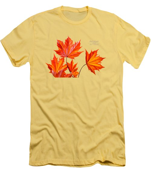 Red Maple Men's T-Shirt (Slim Fit) by Christina Rollo
