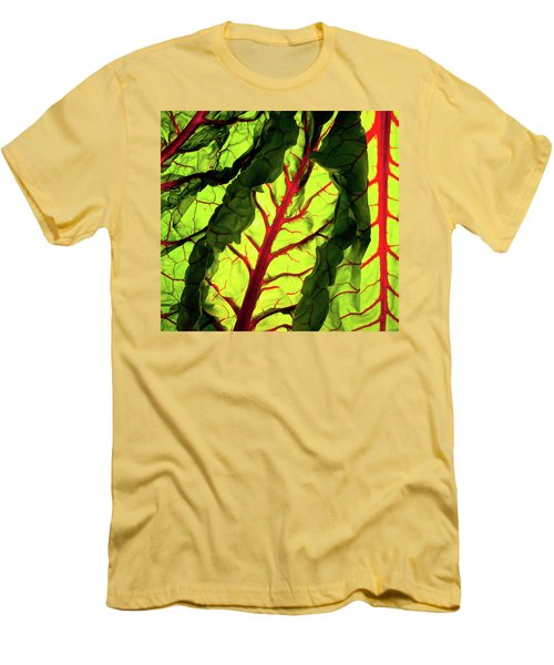 Red River Men's T-Shirt (Slim Fit) by Bobby Villapando