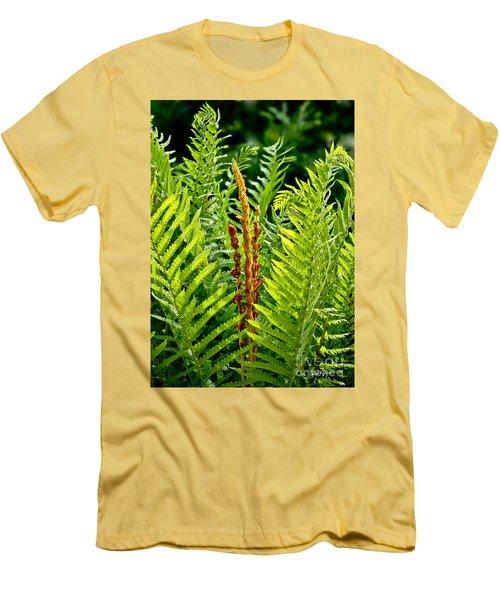 Refreshing Fern In The Woodland Garden Men's T-Shirt (Slim Fit) by Carol F Austin