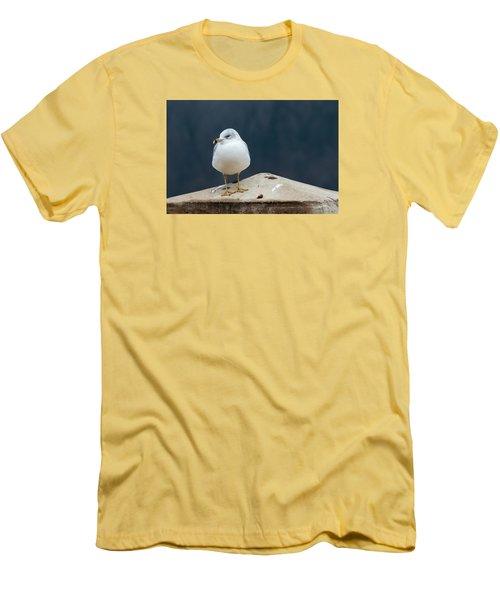 Ring Bill Men's T-Shirt (Athletic Fit)