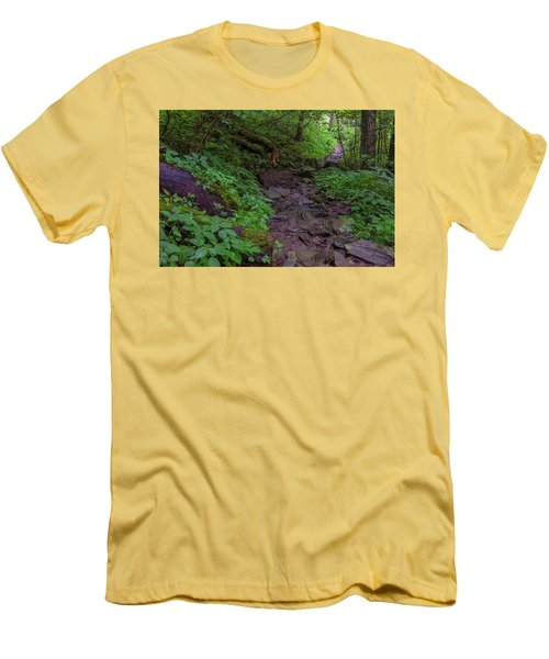 Rocky Path Men's T-Shirt (Slim Fit) by David Cote