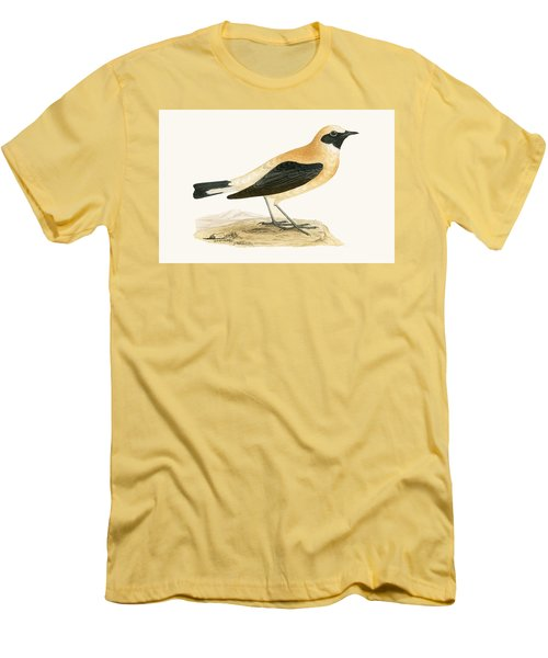 Russet Wheatear Men's T-Shirt (Slim Fit) by English School