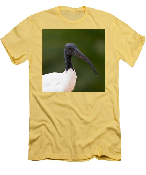 Sacred Ibis Men's T-Shirt (Slim Fit) by Jouko Lehto