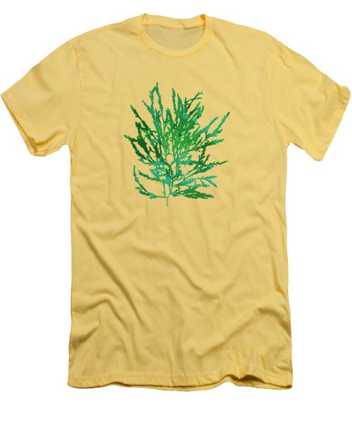 Men's T-Shirt (Slim Fit) featuring the mixed media Sea Green Seaweed Art Odonthalia Dentata by Christina Rollo
