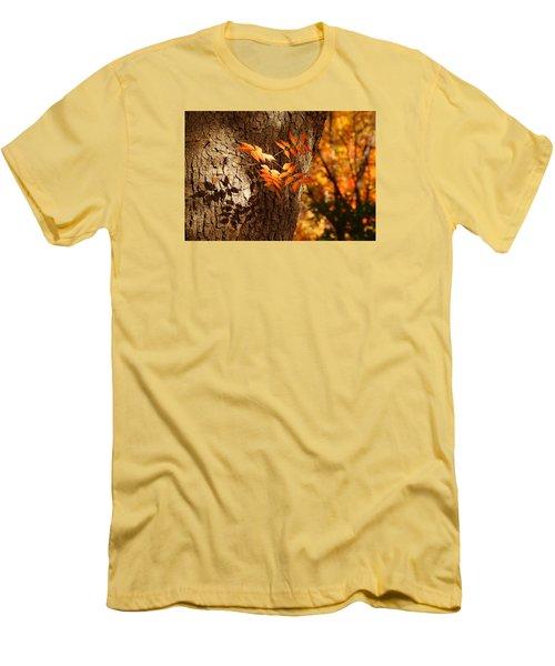 Fall Color Men's T-Shirt (Slim Fit) by Tam Ryan