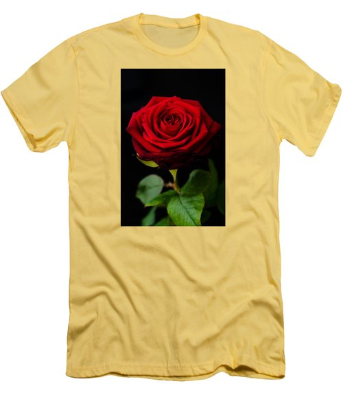 Single Rose Men's T-Shirt (Slim Fit) by Miguel Winterpacht