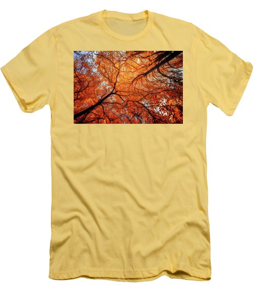 Sky Roots In Forest Red Men's T-Shirt (Slim Fit) by John Williams