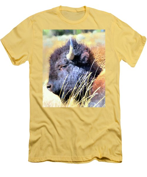 Summer Dozing - Buffalo Men's T-Shirt (Slim Fit) by Greg Sigrist