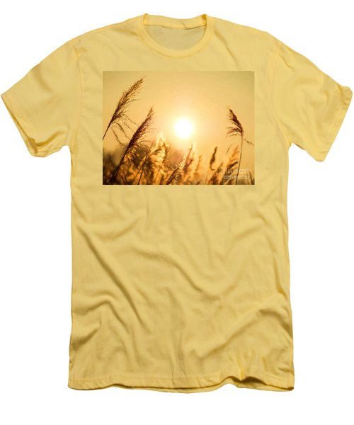 Sun Men's T-Shirt (Athletic Fit)