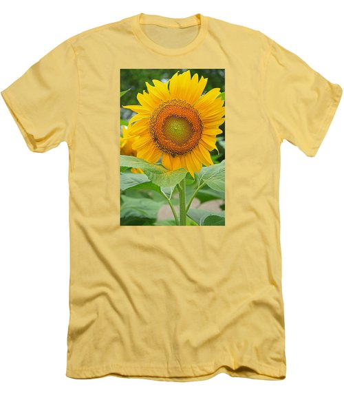 Sunflower Men's T-Shirt (Slim Fit) by Ronald Olivier