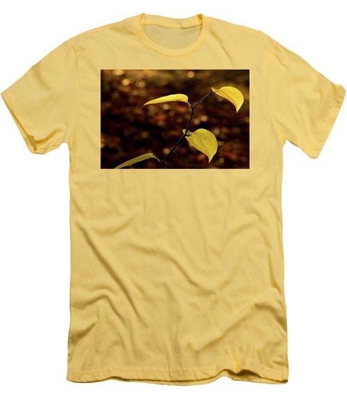 Sunlite Greenbriar Stem Beside The Stream Men's T-Shirt (Athletic Fit)