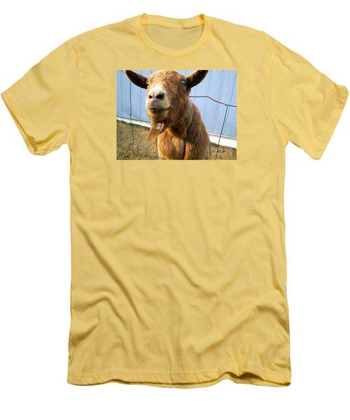 The Friendly Goat  Men's T-Shirt (Slim Fit) by Sandra Church