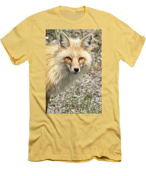 The Gaze Men's T-Shirt (Athletic Fit)