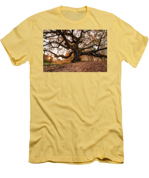 The Great Oak Men's T-Shirt (Athletic Fit)