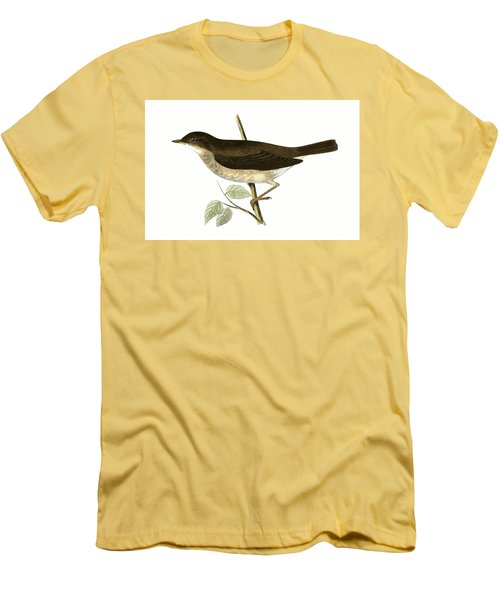 Thrush Nightingale Men's T-Shirt (Athletic Fit)