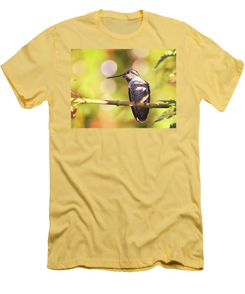 Tiny Bird Upon A Branch Men's T-Shirt (Athletic Fit)