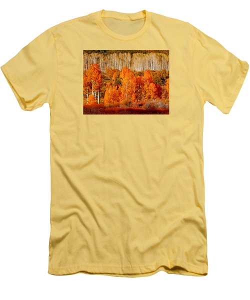 Two Rows Of Aspen Men's T-Shirt (Athletic Fit)