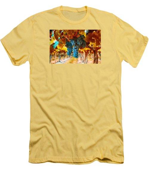 Walking Through The Grapes Men's T-Shirt (Slim Fit) by Lynn Hopwood