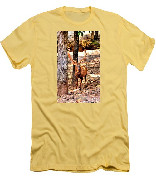 Watchfull Stag Men's T-Shirt (Athletic Fit)