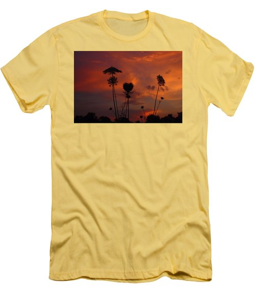 Weeds In The Sunrise Men's T-Shirt (Slim Fit) by Kathryn Meyer