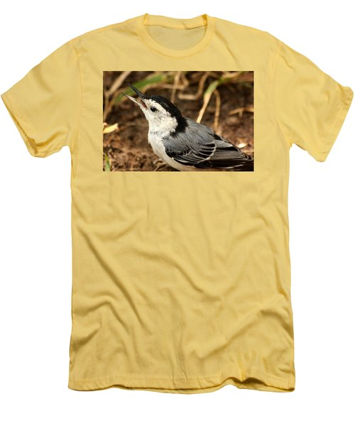 White Breasted Nuthatch 2 Men's T-Shirt (Slim Fit) by Sheila Brown