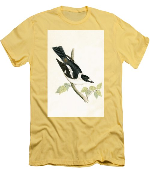 White Collared Flycatcher Men's T-Shirt (Slim Fit) by English School