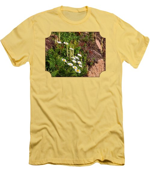 Wild Daisies In The Rocks Men's T-Shirt (Slim Fit) by Gill Billington