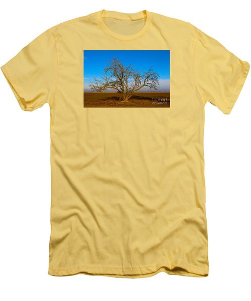 Winter Apple Tree Men's T-Shirt (Slim Fit) by Suzanne Lorenz