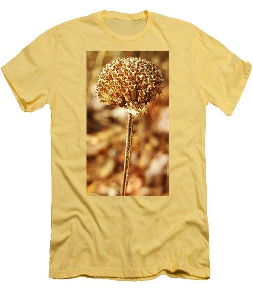 Winter Bee Balm Men's T-Shirt (Slim Fit) by Bruce Carpenter