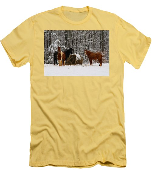 Winter Horses Men's T-Shirt (Athletic Fit)