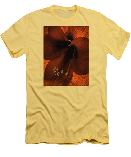 Men's T-Shirt (Slim Fit) featuring the photograph Winter Sunshine by Cathy Donohoue