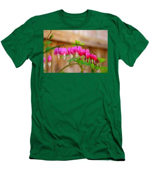 Graceful Arch Of Bleeding Heart Men's T-Shirt (Slim Fit) by Patti Whitten