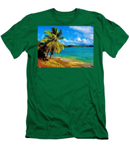 Haulover Bay Usvi Men's T-Shirt (Athletic Fit)