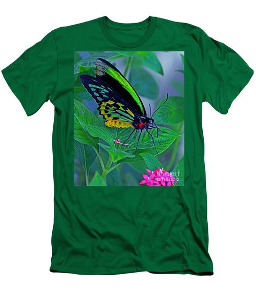 Rainbow Butterfly Men's T-Shirt (Athletic Fit)