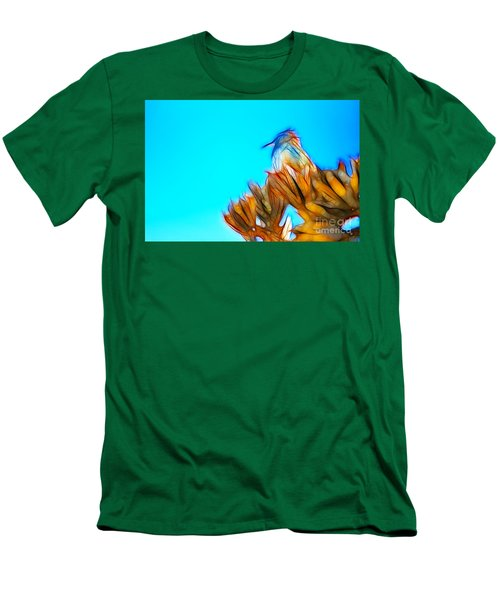 The Cactus Wren Men's T-Shirt (Slim Fit) by Donna Greene