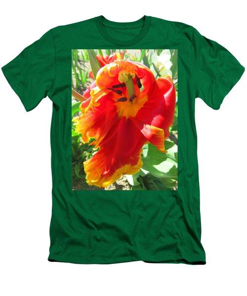 Garden Delight Men's T-Shirt (Athletic Fit)
