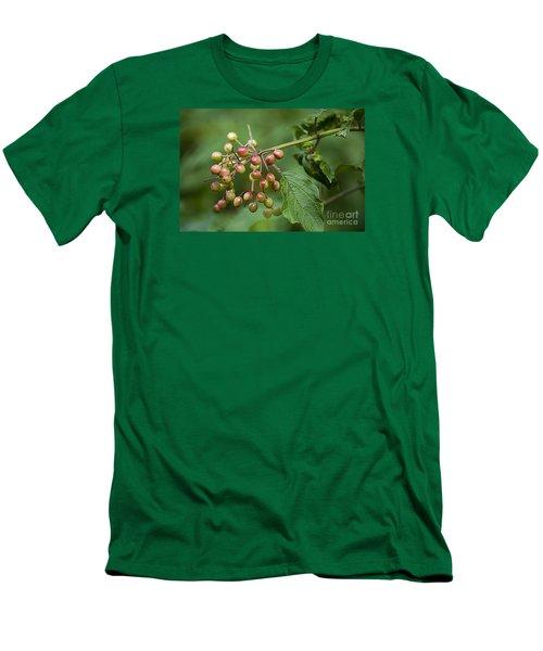 High Bush Cranberry 20120703_106a Men's T-Shirt (Slim Fit) by Tina Hopkins