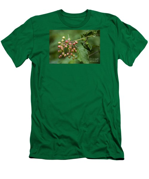 High Bush Cranberry 20120703_106a Men's T-Shirt (Athletic Fit)
