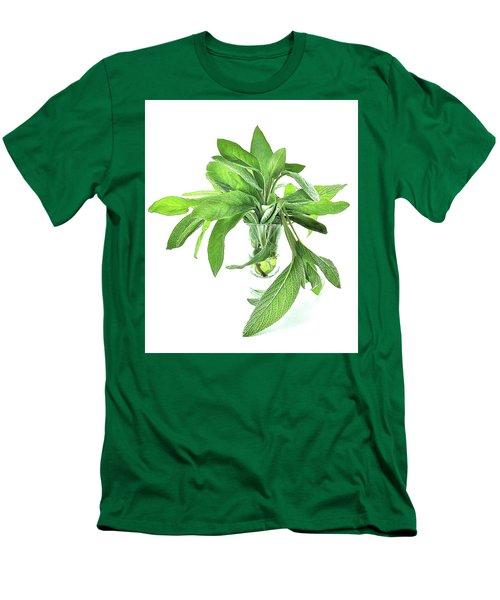 Sage Men's T-Shirt (Athletic Fit)