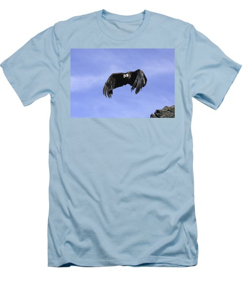 Andean Condor Men's T-Shirt (Athletic Fit)