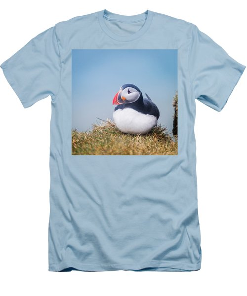 Atlantic Puffin Fratercula Arctica Men's T-Shirt (Slim Fit) by Panoramic Images