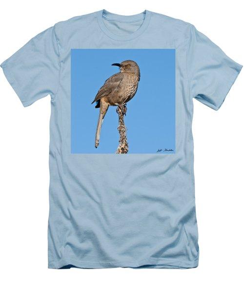 Curve-billed Thrasher Men's T-Shirt (Athletic Fit)