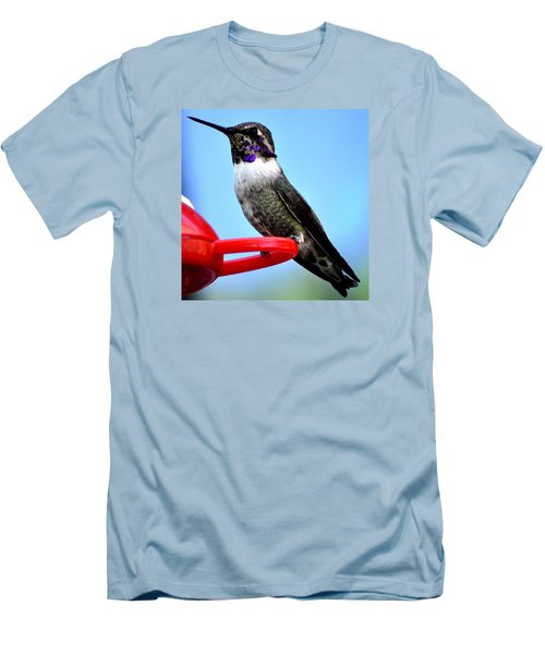 Men's T-Shirt (Slim Fit) featuring the photograph Male Anna On Perch by Jay Milo